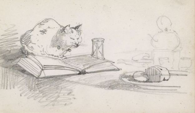 rough pencil drawing of a cat sitting on a table next to an open book
